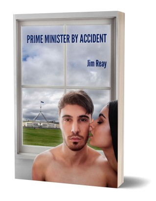 thumbnail_PRIME MINISTER BY ACCIDENT_3D Book Cover